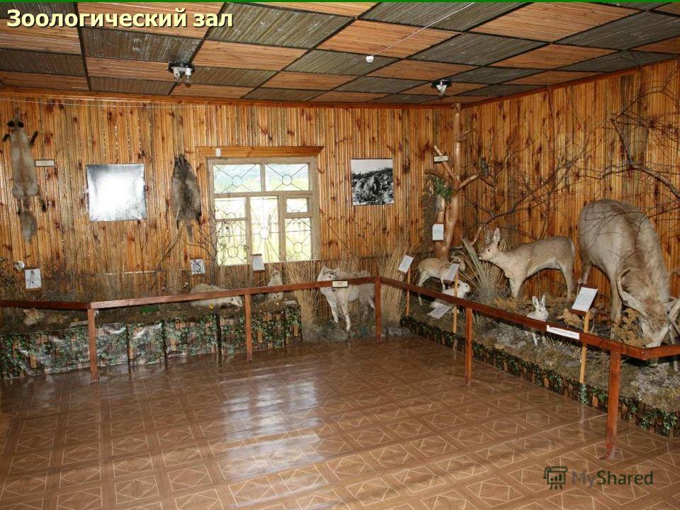 Зоологический зал