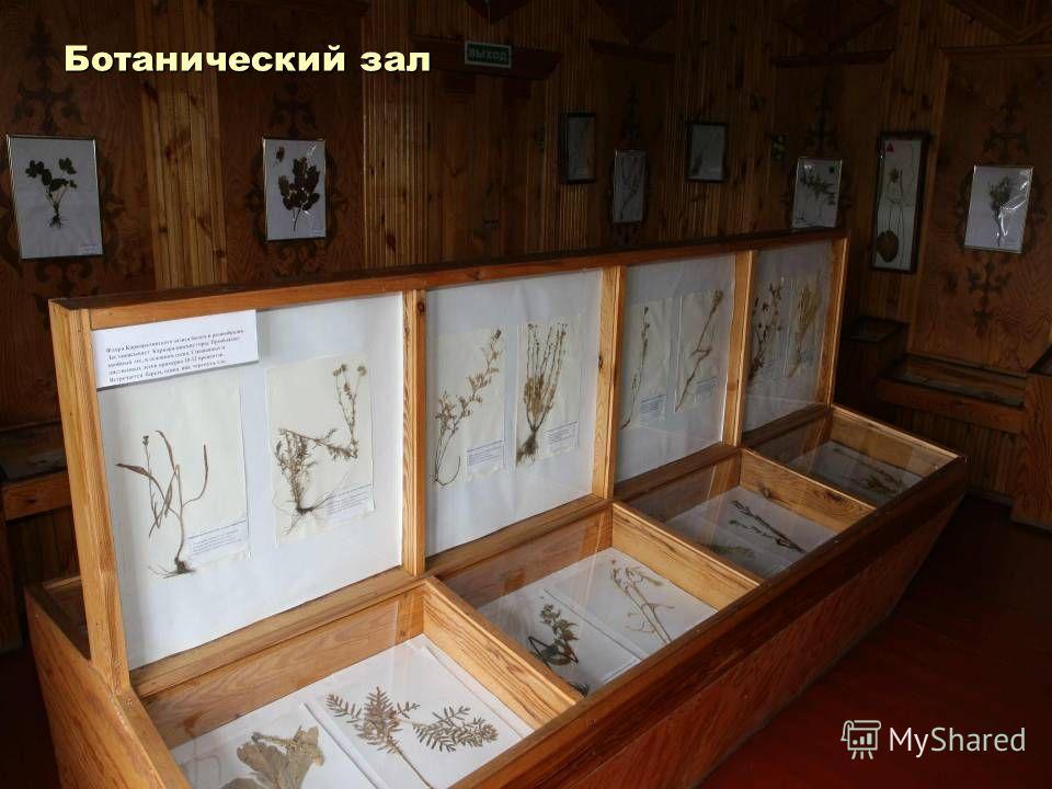 Ботанический зал