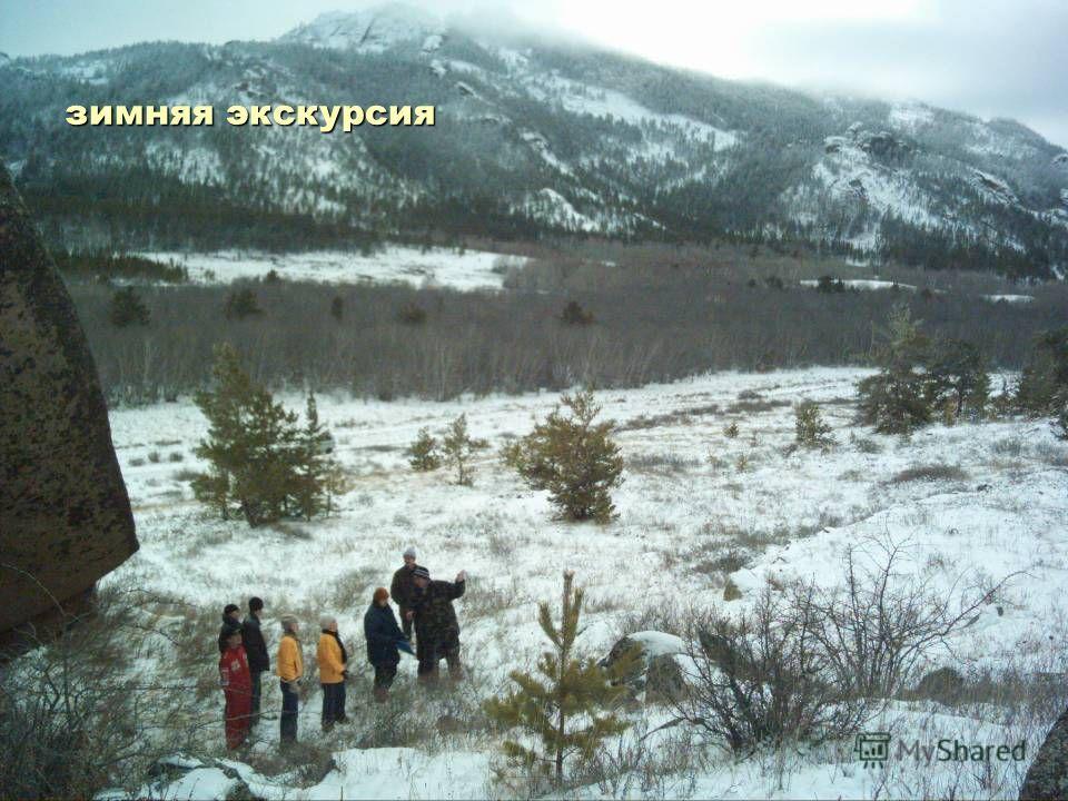 зимняя экскурсия
