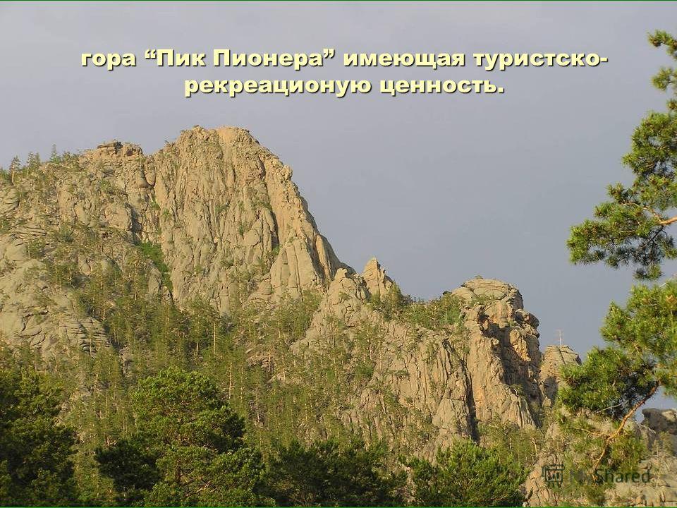 гора Пик Пионера имеющая туристско- рекреационую ценность.