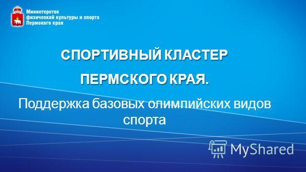 СПОРТИВНЫЙ КЛАСТЕР ПЕРМСКОГО КРАЯ. Поддержка базовых олимпийских видов спорта