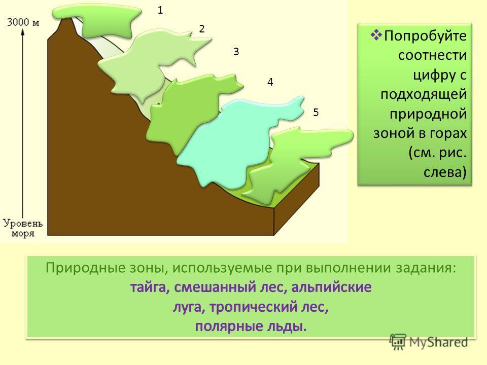 1 2 3 4 5 Попробуйте соотнести цифру с подходящей природной зоной в горах (см. рис. слева) Попробуйте соотнести цифру с подходящей природной зоной в горах (см. рис. слева)