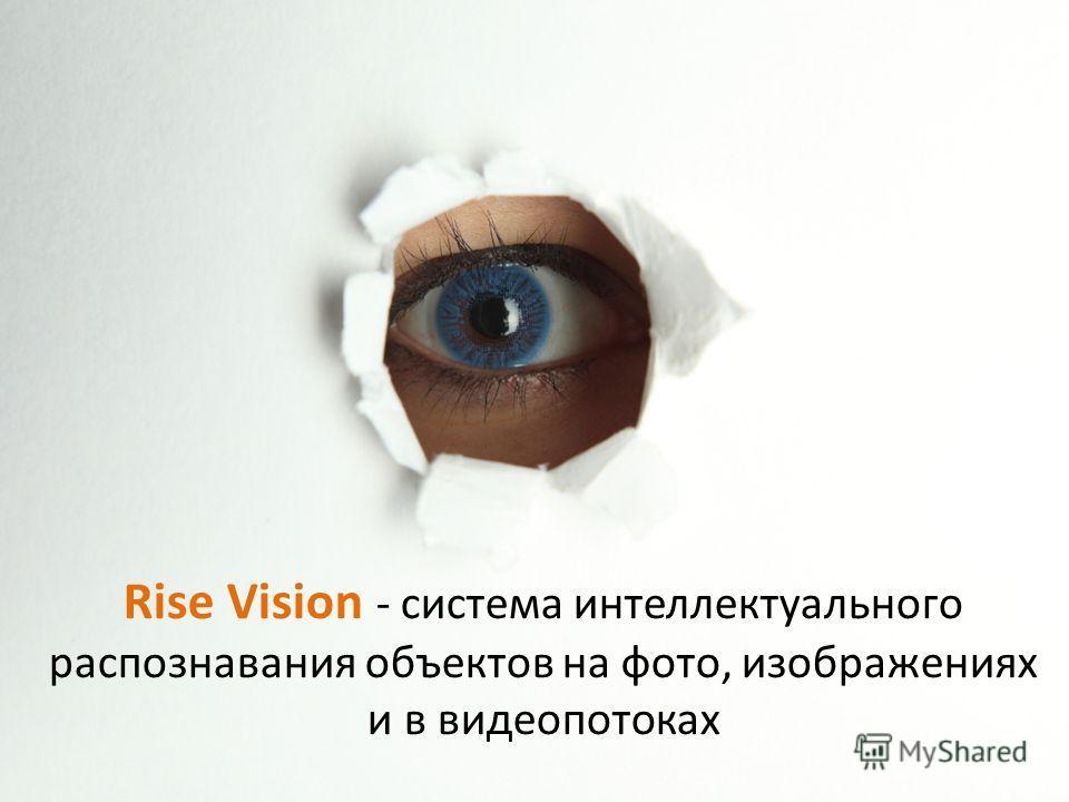Rise Vision - система интеллектуального распознавания объектов на фото, изображениях и в видеопотоках