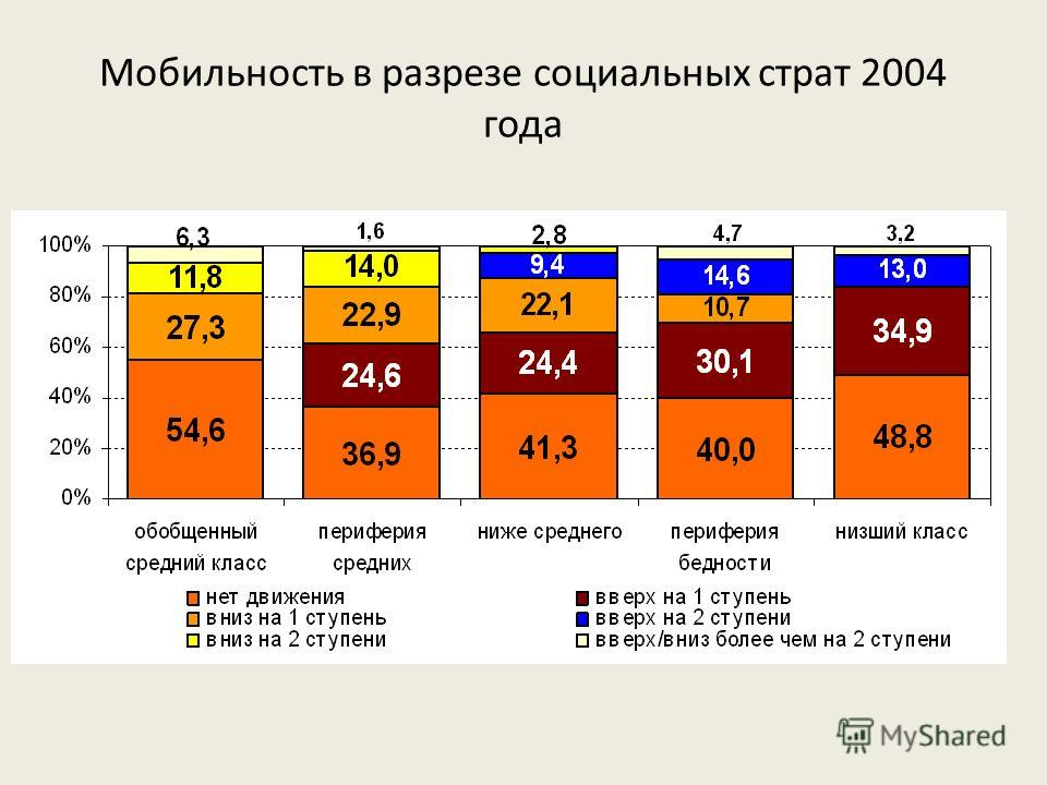 Мобильность в разрезе социальных страт 2004 года