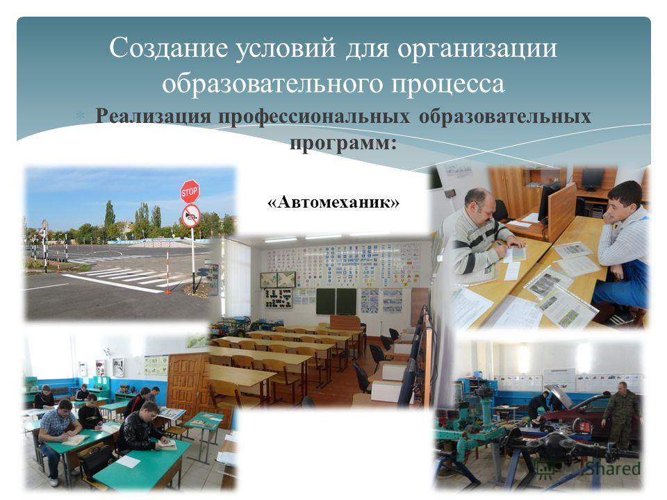 Реализация профессиональных образовательных программ: Создание условий для организации образовательного процесса «Автомеханик»