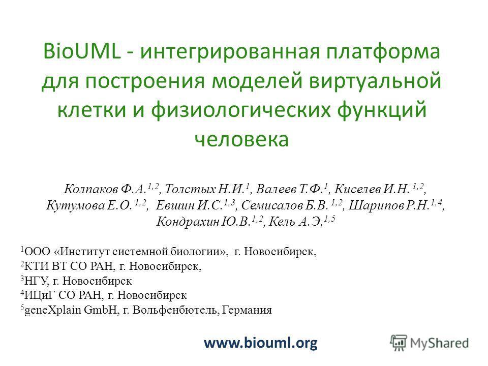 BioUML - интегрированная платформа для построения моделей виртуальной клетки и физиологических функций человека www.biouml.org Колпаков Ф.А. 1,2, Толстых Н.И. 1, Валеев Т.Ф. 1, Киселев И.Н. 1,2, Кутумова Е.О. 1,2, Евшин И.С. 1,3, Семисалов Б.В. 1,2,