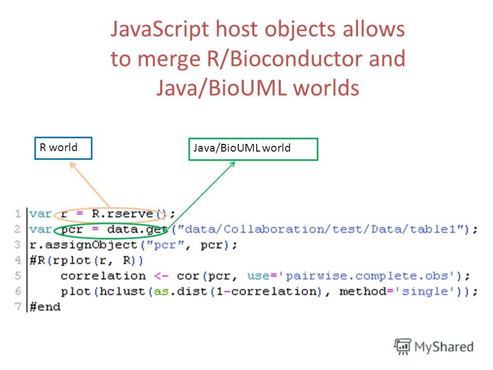 R world Java/BioUML world JavaScript host objects allows to merge R/Bioconductor and Java/BioUML worlds