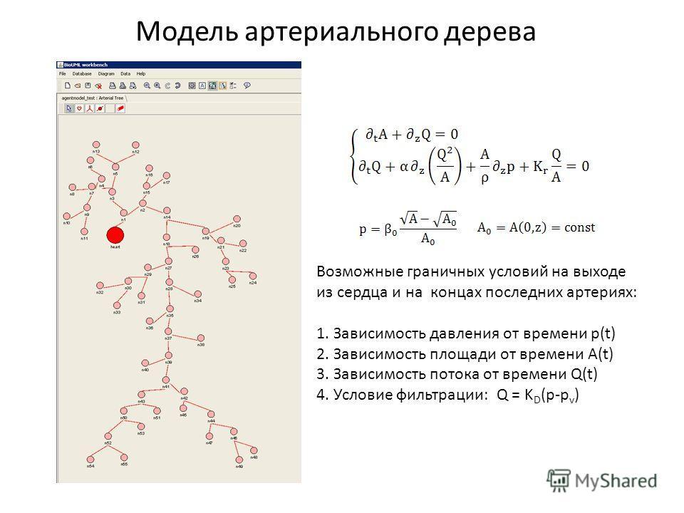 Модель артериального дерева Возможные граничных условий на выходе из сердца и на концах последних артериях: 1. Зависимость давления от времени p(t) 2. Зависимость площади от времени A(t) 3. Зависимость потока от времени Q(t) 4. Условие фильтрации: Q