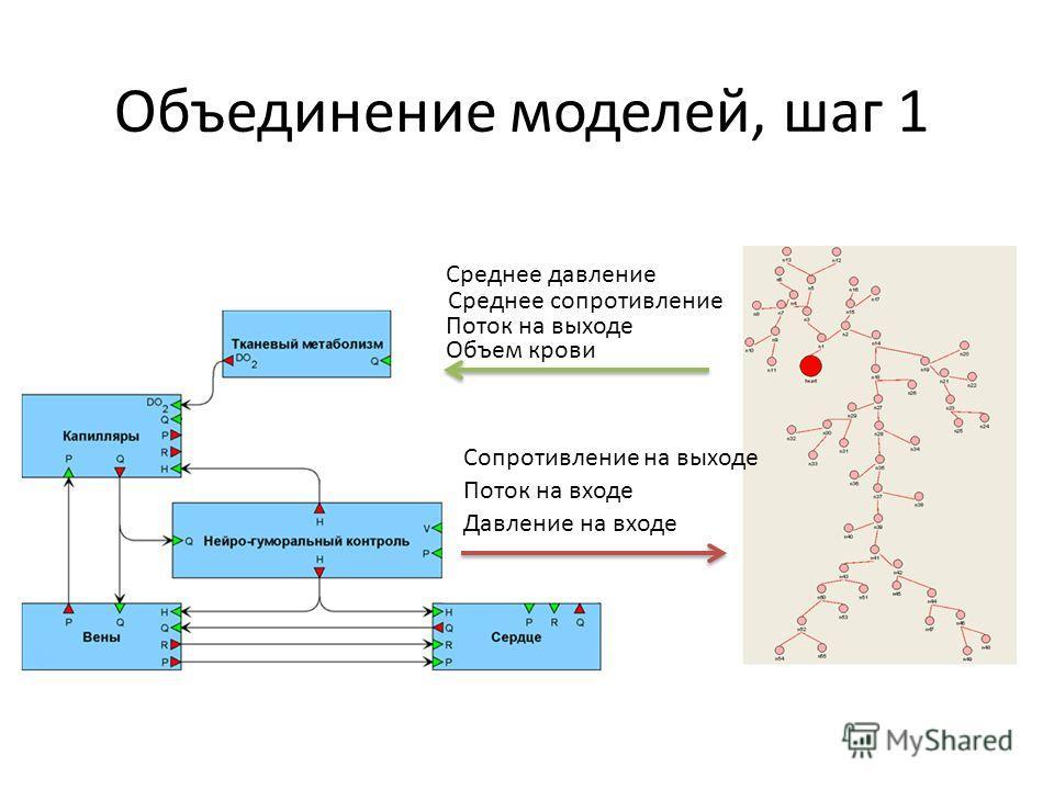 Среднее давление Среднее сопротивление Поток на выходе Объем крови Поток на входе Давление на входе Сопротивление на выходе
