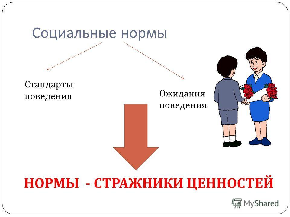 Социальные нормы Стандарты поведения Ожидания поведения НОРМЫ - СТРАЖНИКИ ЦЕННОСТЕЙ