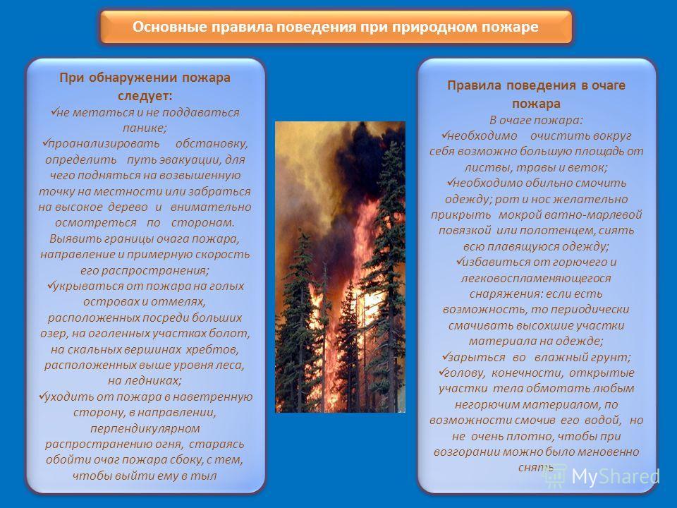 Основные правила поведения при природном пожаре При обнаружении пожара следует: не метаться и не поддаваться панике; проанализировать обстановку, определить путь эвакуации, для чего подняться на возвышенную точку на местности или забраться на высокое