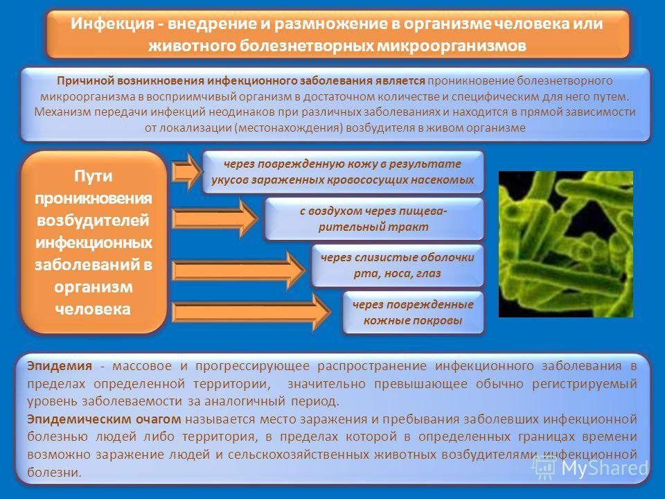 Инфекция - внедрение и размножение в организме человека или животного болезнетворных микроорганизмов Причиной возникновения инфекционного заболевания является проникновение болезнетворного микроорганизма в восприимчивый организм в достаточном количес