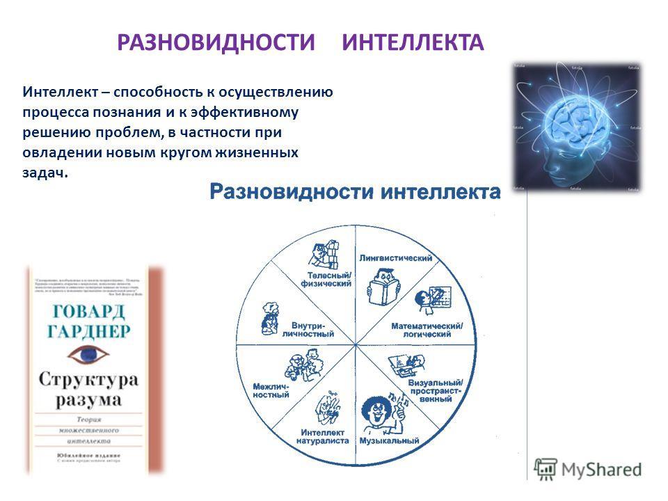 РАЗНОВИДНОСТИ ИНТЕЛЛЕКТА Интеллект – способность к осуществлению процесса познания и к эффективному решению проблем, в частности при овладении новым кругом жизненных задач.
