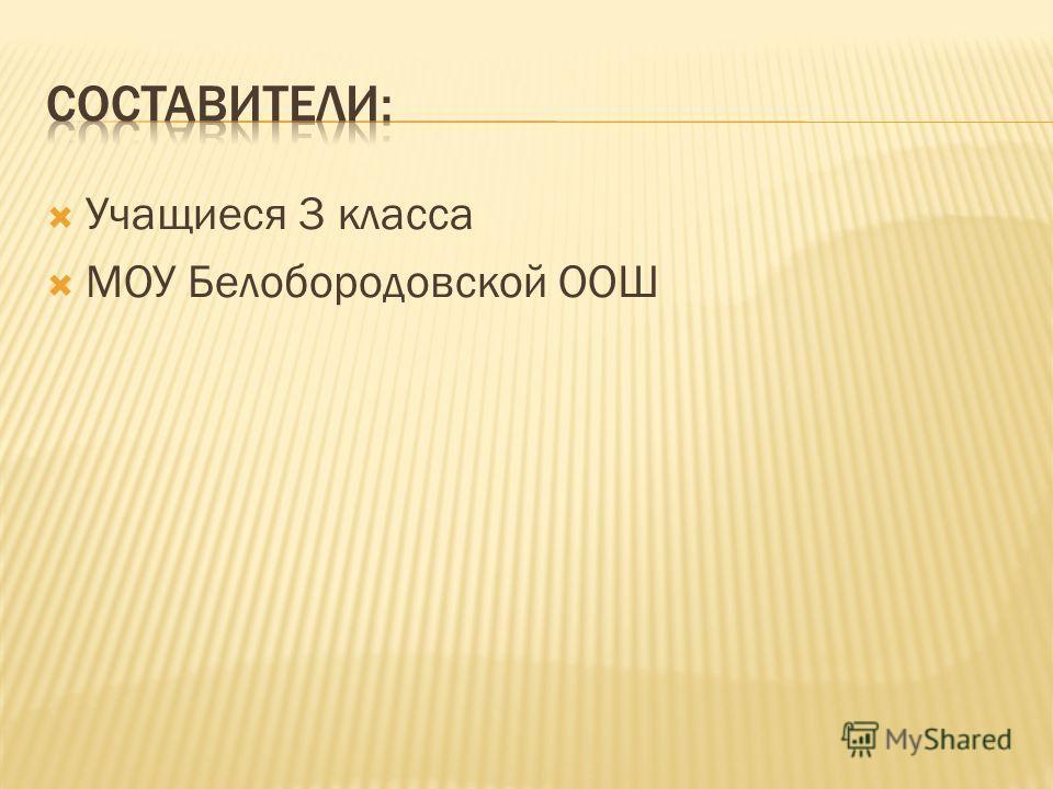 Учащиеся 3 класса МОУ Белобородовской ООШ