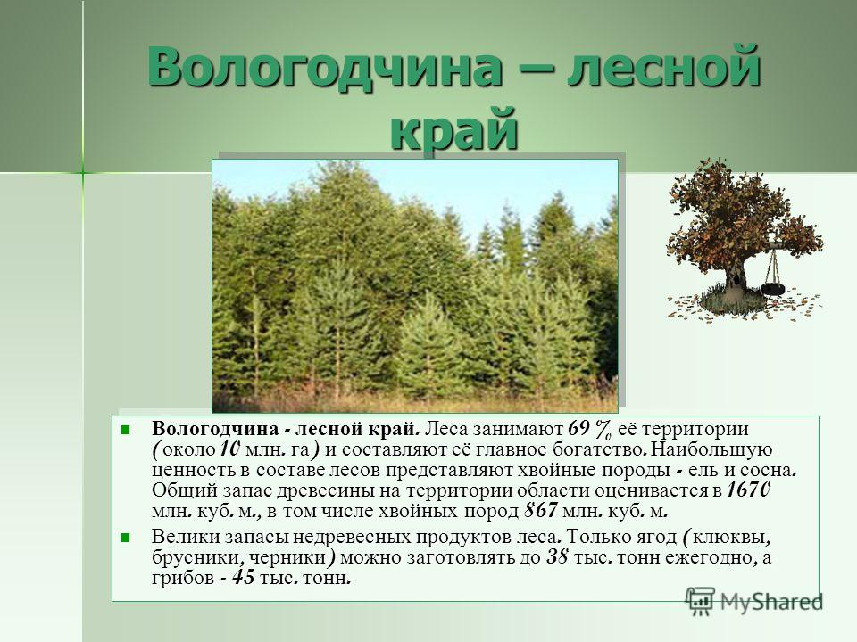 Полезные ископаемые области Область занимает одно из первых мест на европейской территории России по числу и площади торфяных болот, а также запасам торфа - около 2,7 млн. тонн. Область занимает одно из первых мест на европейской территории России по