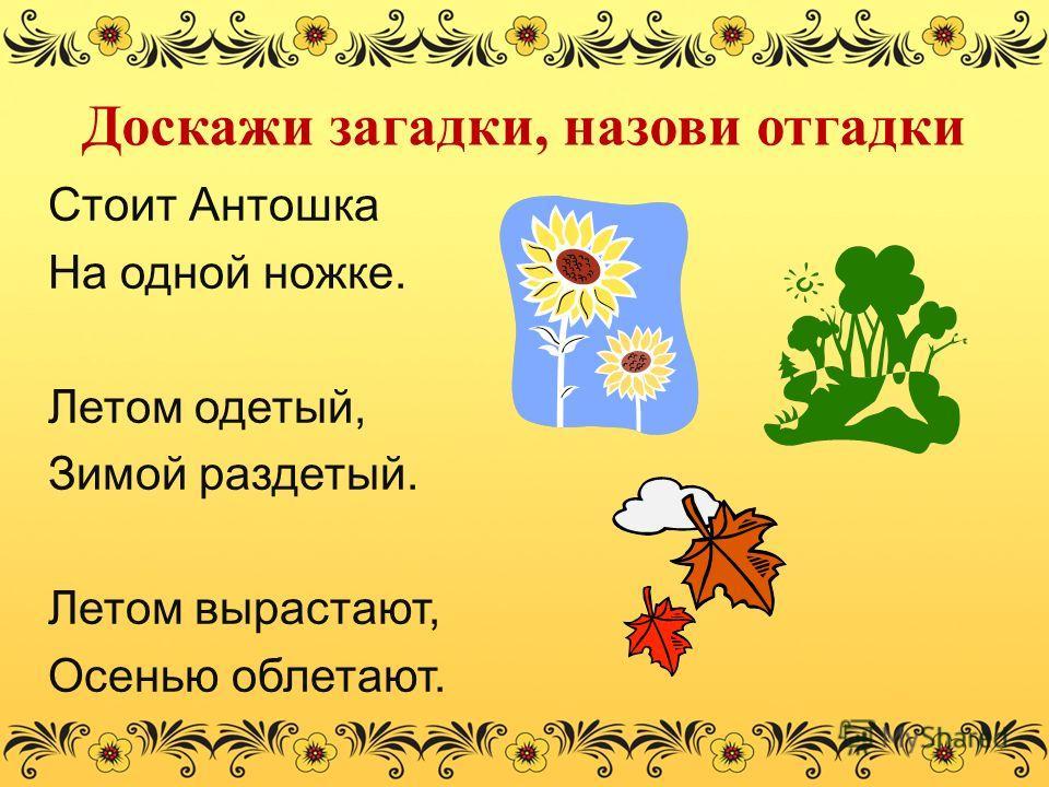 Доскажи загадки, назови отгадки Стоит Антошка На одной ножке. Летом одетый, Зимой раздетый. Летом вырастают, Осенью облетают.