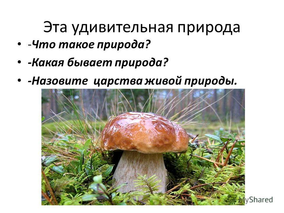 Эта удивительная природа -Что такое природа? -Какая бывает природа? -Назовите царства живой природы.