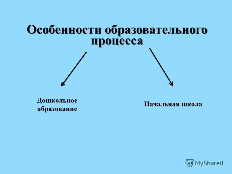 Особенности образовательного процесса Дошкольное образование Начальная школа