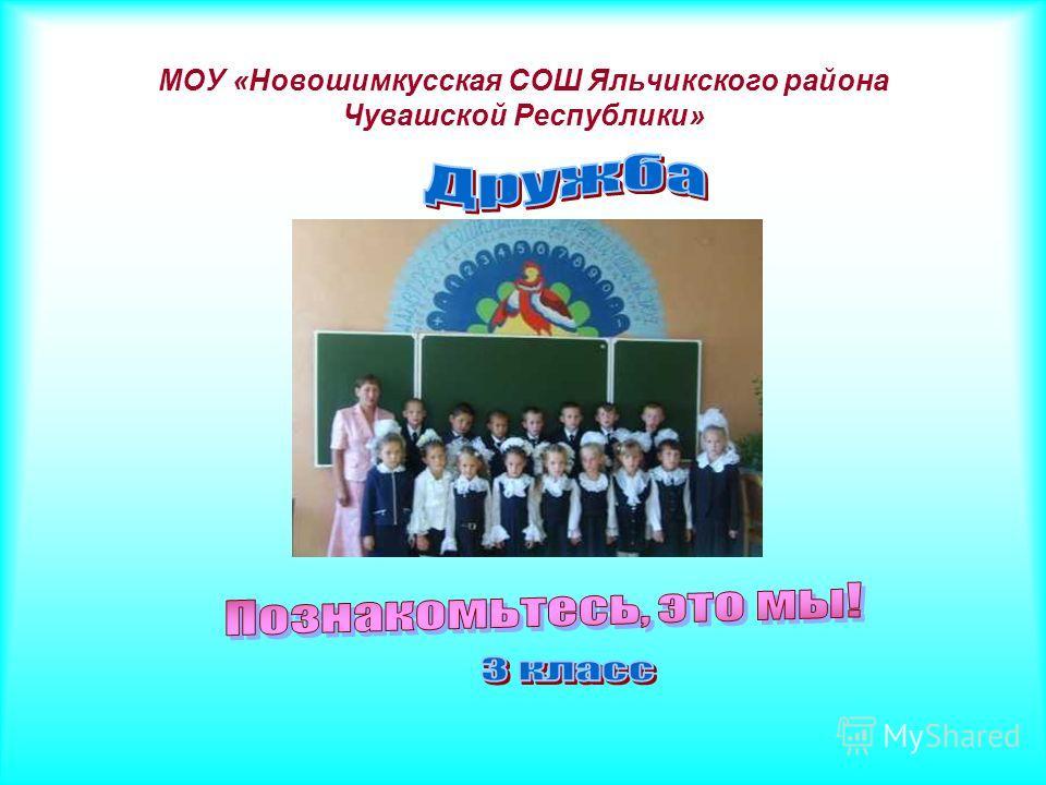 МОУ «Новошимкусская СОШ Яльчикского района Чувашской Республики»