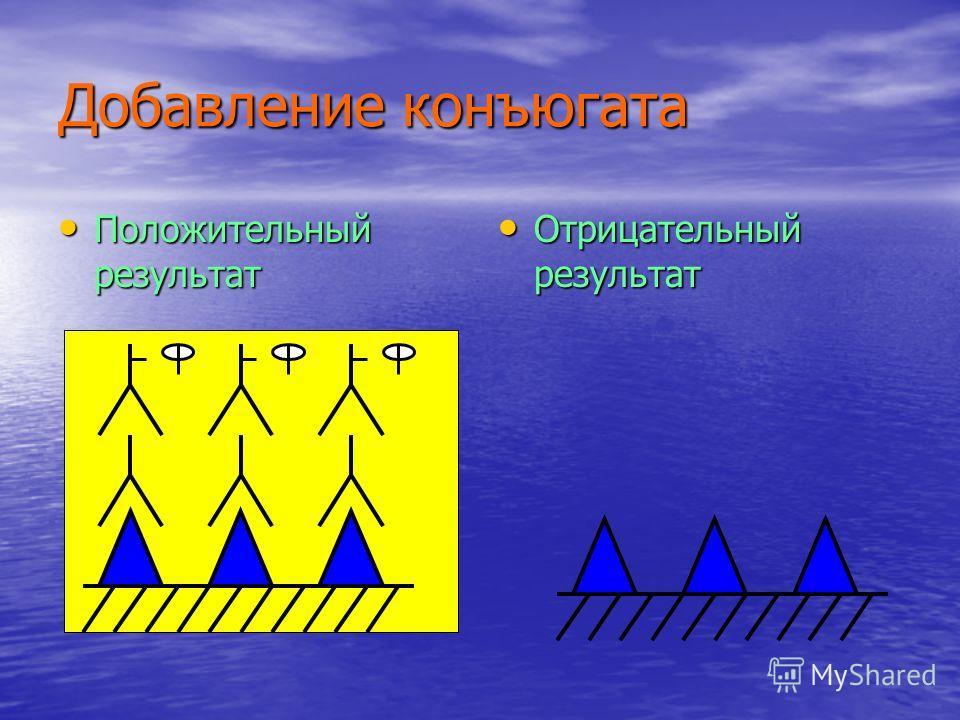 Добавление конъюгата Положительный результат Положительный результат Отрицательный результат Отрицательный результат