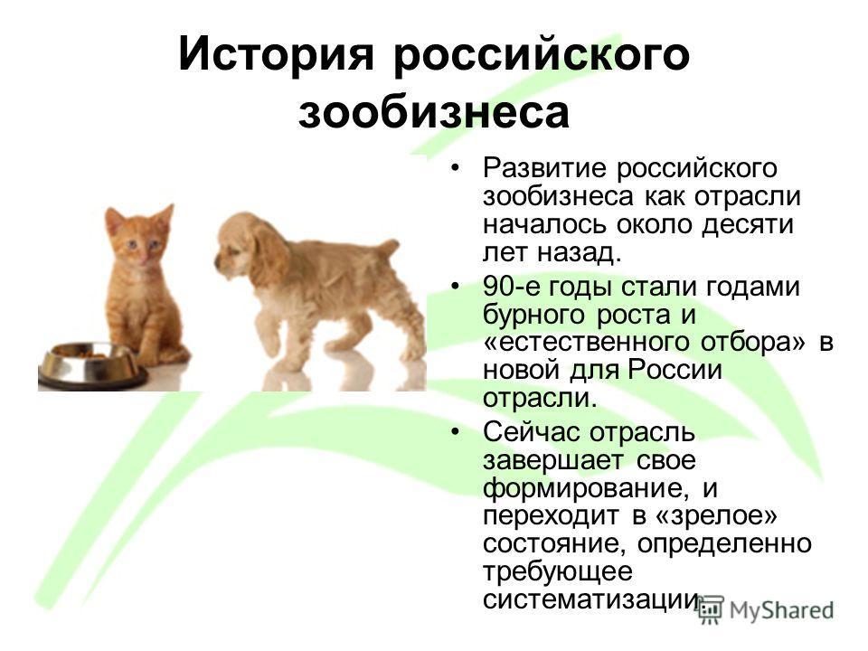 История российского зообизнеса Развитие российского зообизнеса как отрасли началось около десяти лет назад. 90-е годы стали годами бурного роста и «естественного отбора» в новой для России отрасли. Сейчас отрасль завершает свое формирование, и перехо