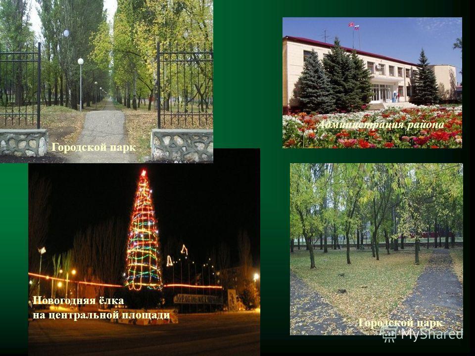 Администрация района Новогодняя ёлка на центральной площади Городской парк