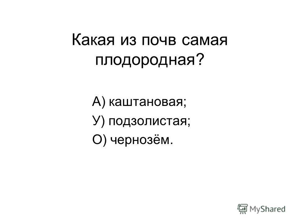 Какая из почв самая плодородная? А) каштановая; У) подзолистая; О) чернозём.