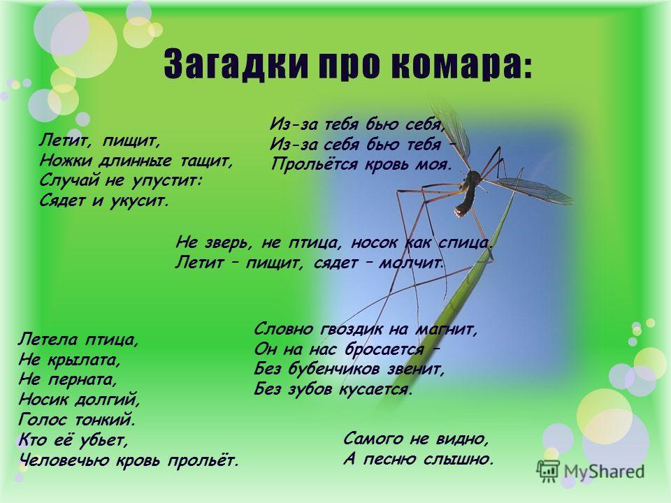 Летит, пищит, Ножки длинные тащит, Случай не упустит: Сядет и укусит. Не зверь, не птица, носок как спица. Летит – пищит, сядет – молчит. Из-за тебя бью себя, Из-за себя бью тебя – Прольётся кровь моя. Летела птица, Не крылата, Не перната, Носик долг