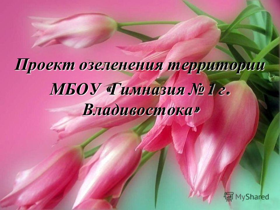 Проект озеленения территории МБОУ « Гимназия 1 г. Владивостока »