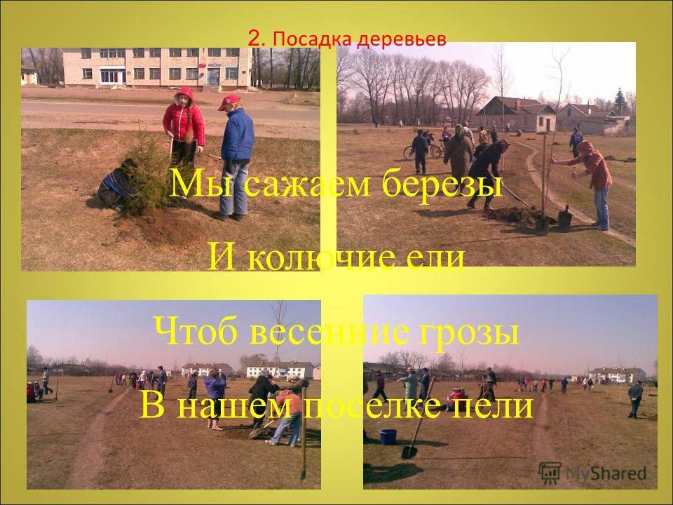 Мы сажаем березы И колючие ели Чтоб весенние грозы В нашем поселке пели 2. Посадка деревьев