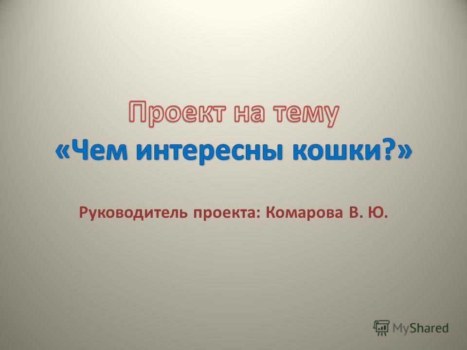 Руководитель проекта: Комарова В. Ю.