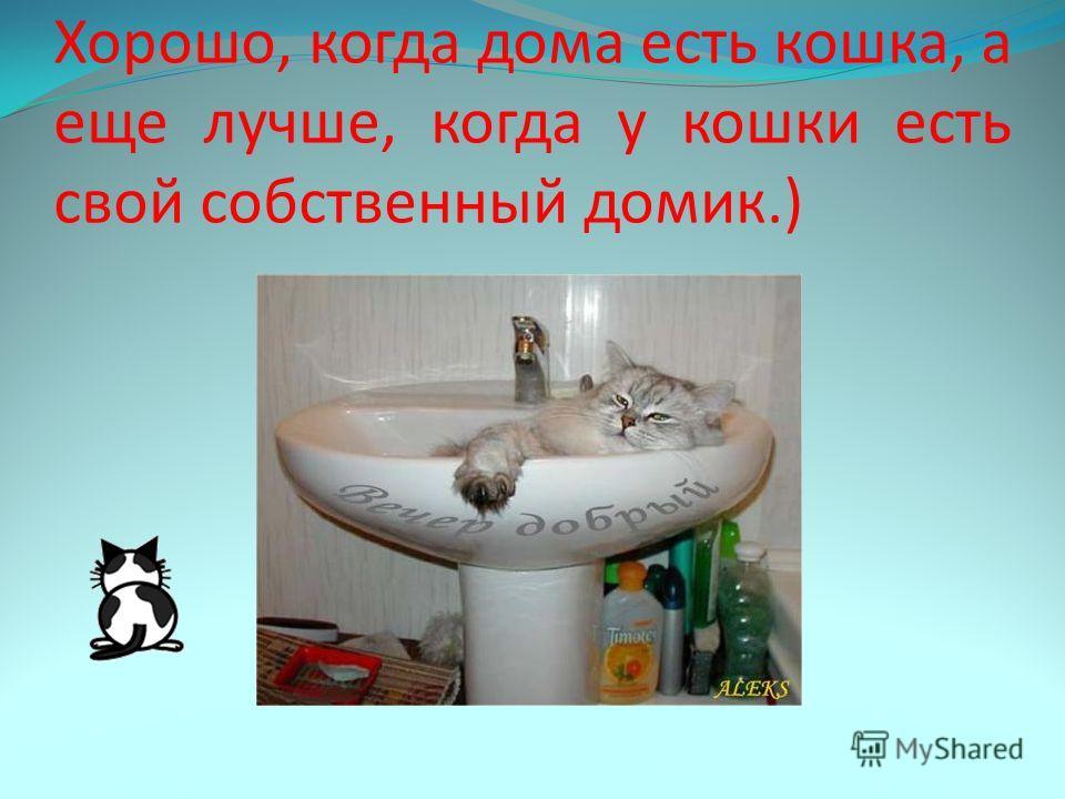 Хорошо, когда дома есть кошка, а еще лучше, когда у кошки есть свой собственный домик.)