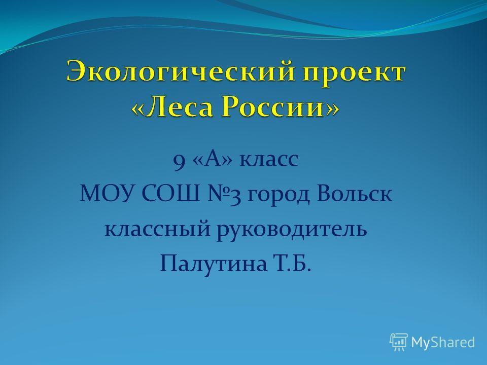 9 «А» класс МОУ СОШ 3 город Вольск классный руководитель Палутина Т.Б.