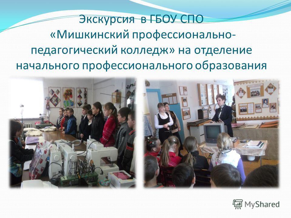 Экскурсия в ГБОУ СПО «Мишкинский профессионально- педагогический колледж» на отделение начального профессионального образования