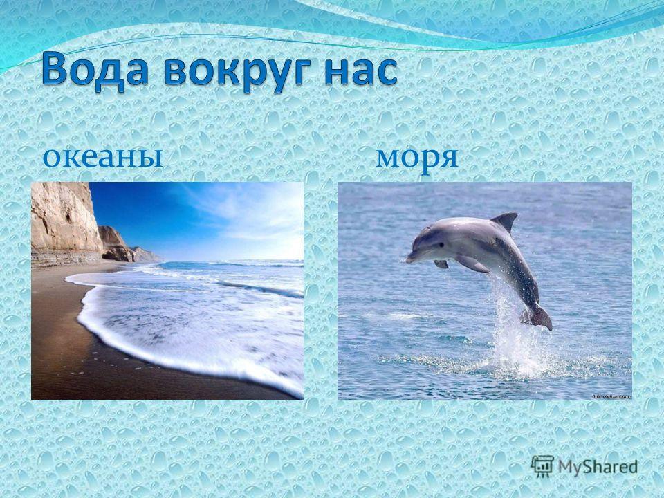 океаны моря