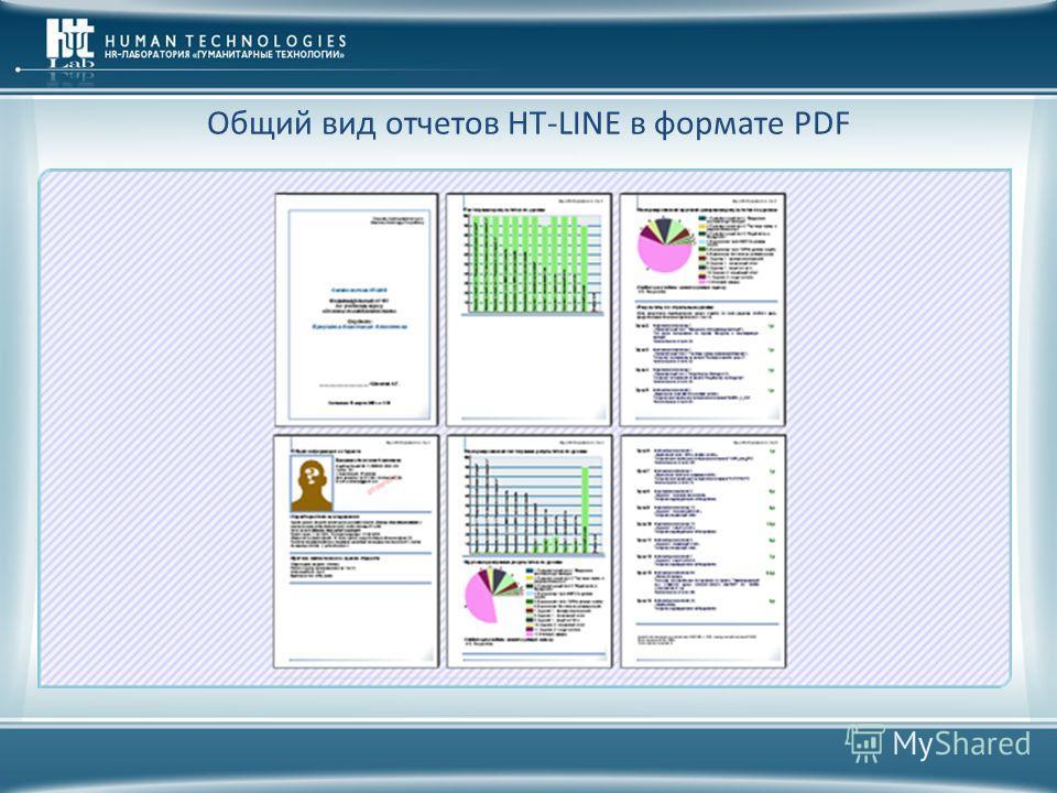Общий вид отчетов HT-LINE в формате PDF