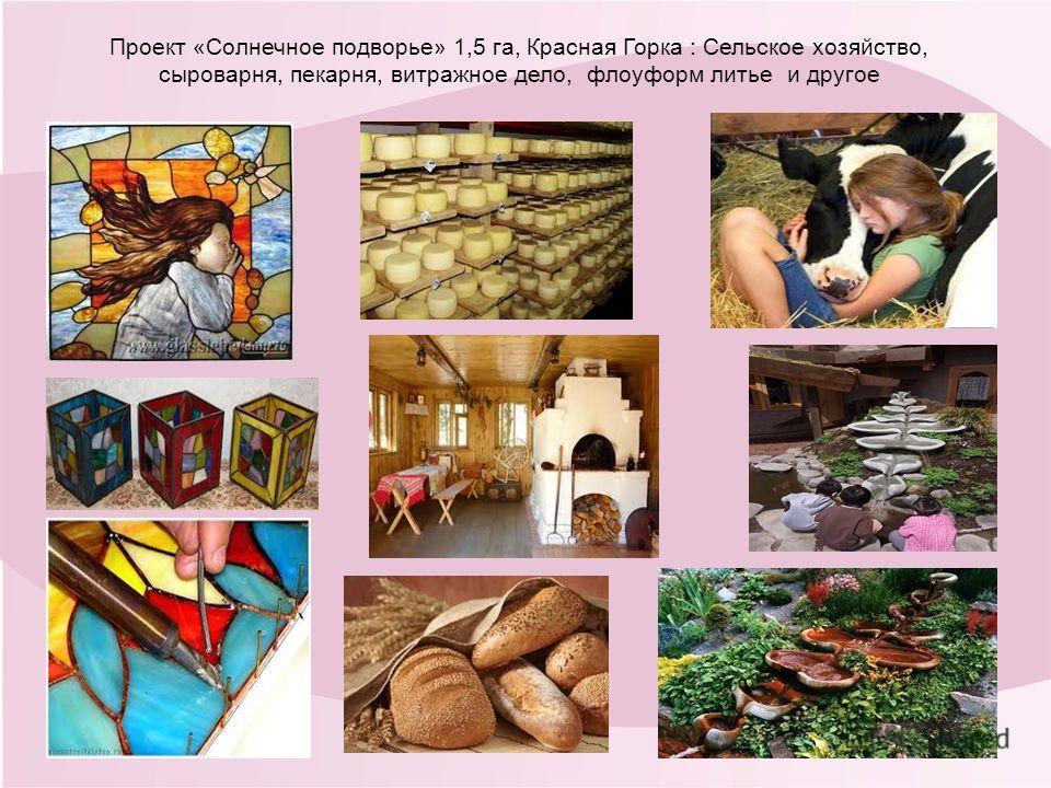 Проект «Солнечное подворье» 1,5 га, Красная Горка : Сельское хозяйство, сыроварня, пекарня, витражное дело, флоуформ литье и другое