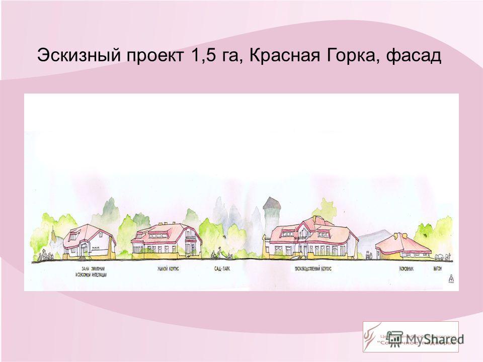 Эскизный проект 1,5 га, Красная Горка, фасад