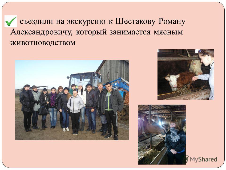 - съездили на экскурсию к Шестакову Роману Александровичу, который занимается мясным животноводством