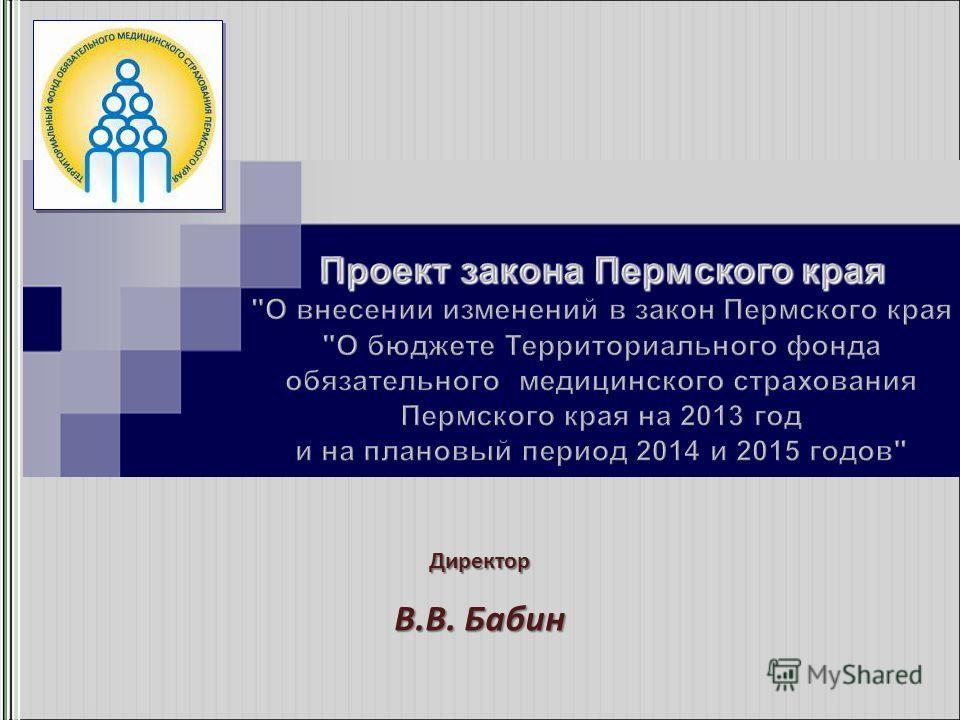 Директор В.В. Бабин