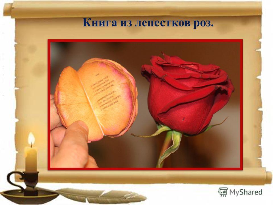 Книга из лепестков роз.