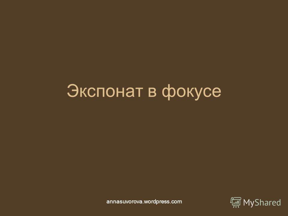 Экспонат в фокусе annasuvorova.wordpress.com