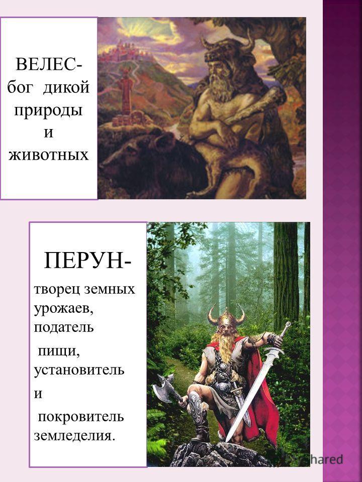 ВЕЛЕС- бог дикой природы и животных ПЕРУН- творец земных урожаев, податель пищи, установитель и покровитель земледелия.