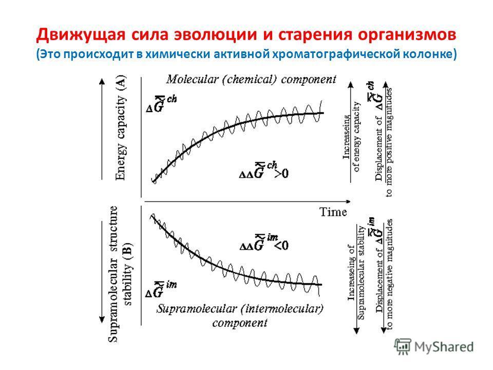 Движущая сила эволюции и старения организмов (Это происходит в химически активной хроматографической колонке)