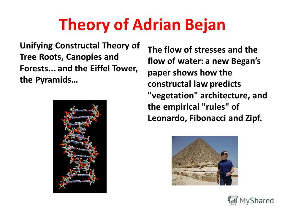 Theory of Adrian Bejan Unifying Constructal Theory of Tree Roots, Canopies and Forests... and the Eiffel Tower, the Pyramids… The flow of stresses and the flow of water: a new Begans paper shows how the constructal law predicts