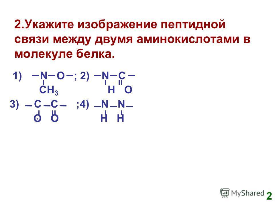 2.Укажите изображение пептидной связи между двумя аминокислотами в молекуле белка. 1) N O ; 2) N C CH 3 H O 3) C C ;4) N N O O H H 2