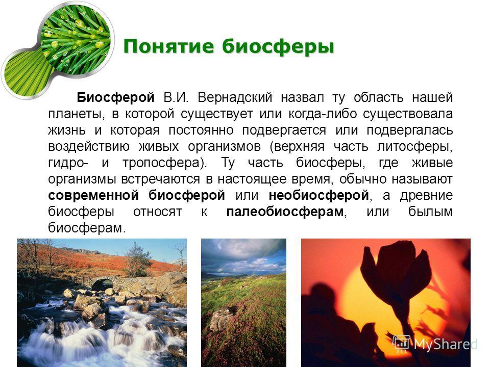 Понятие биосферы Биосферой В.И. Вернадский назвал ту область нашей планеты, в которой существует или когда-либо существовала жизнь и которая постоянно подвергается или подвергалась воздействию живых организмов (верхняя часть литосферы, гидро- и тропо