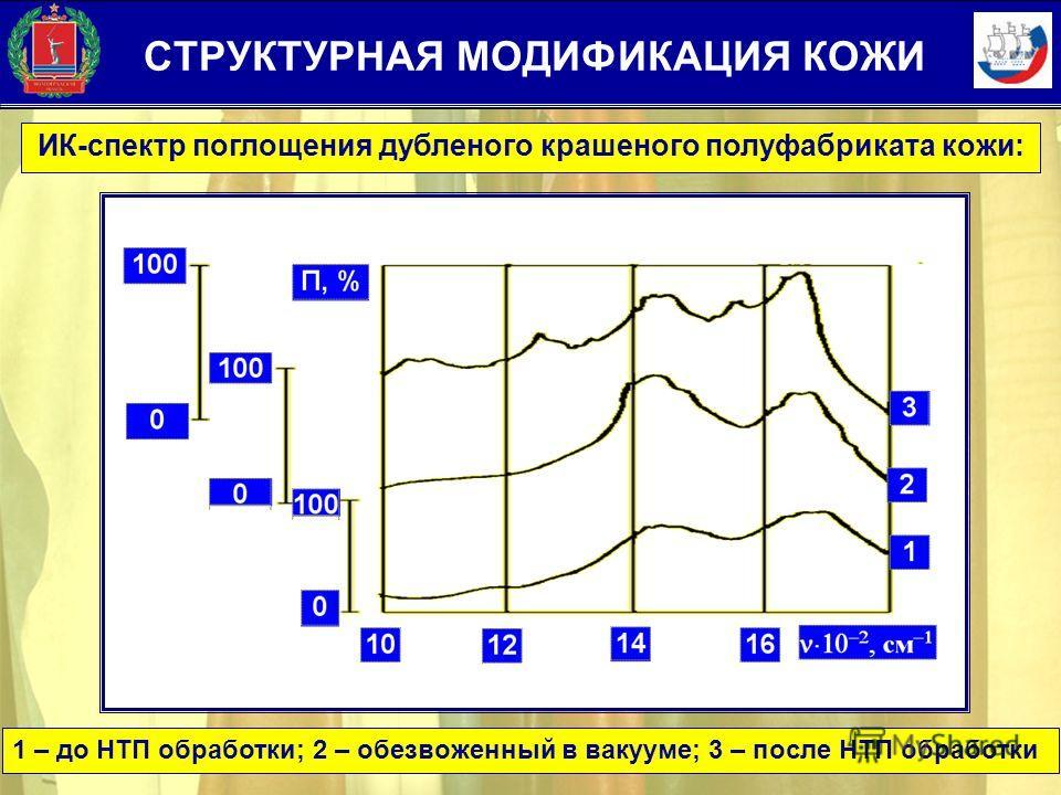 ИК-спектр поглощения дубленого крашеного полуфабриката кожи: 1 – до НТП обработки; 2 – обезвоженный в вакууме; 3 – после НТП обработки СТРУКТУРНАЯ МОДИФИКАЦИЯ КОЖИ