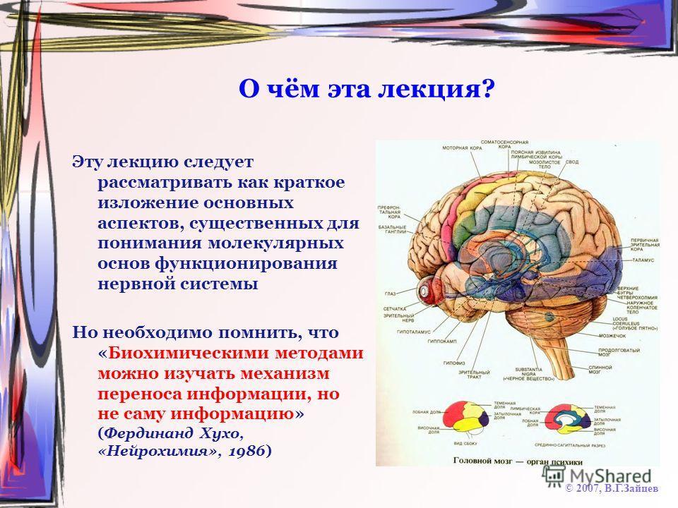 О чём эта лекция? Эту лекцию следует рассматривать как краткое изложение основных аспектов, существенных для понимания молекулярных основ функционирования нервной системы Но необходимо помнить, что «Биохимическими методами можно изучать механизм пере