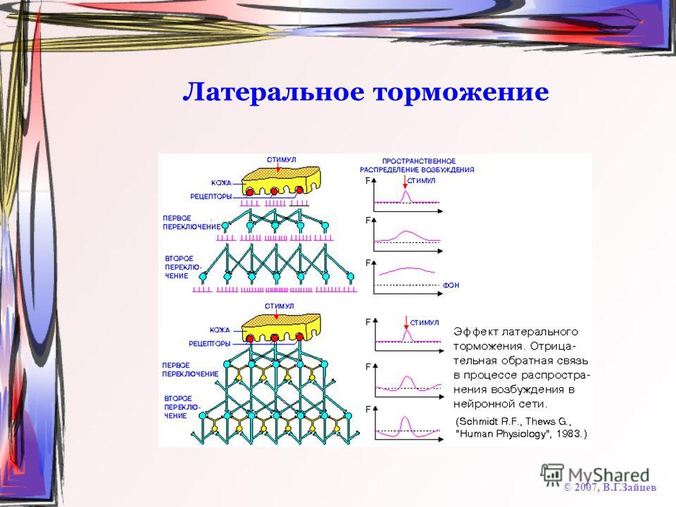 Латеральное торможение © 2007, В.Г.Зайцев